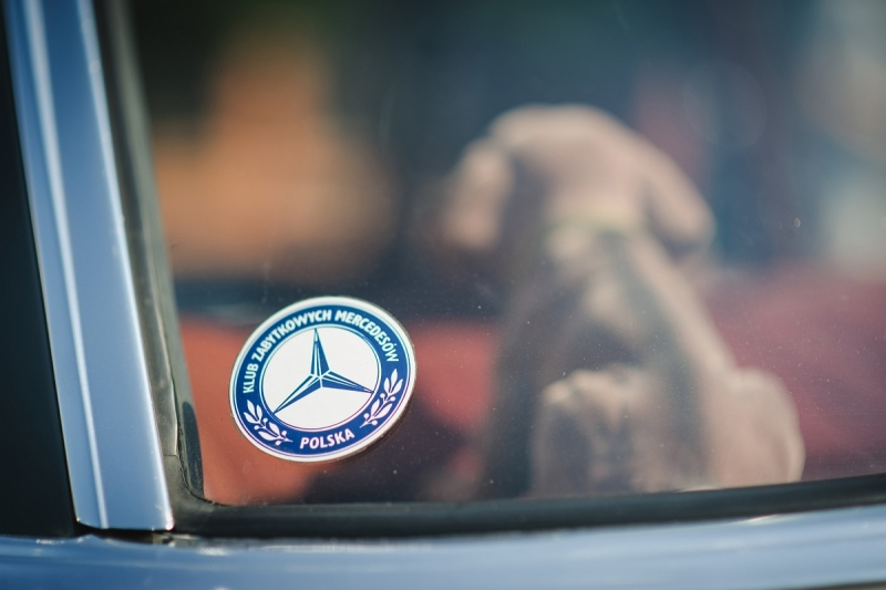 Shes-Mercedes-2020-146